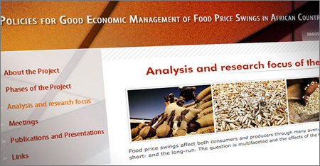 Policies for Good Economic Management of Food Price Swings in African Countries