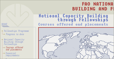 Fao national capacity building and fellowships